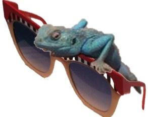 Lézard sur une paire de lunettes